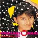 島崎和歌子の美のヒミツはコラーゲン?その神秘の効果と豊富な食品は?